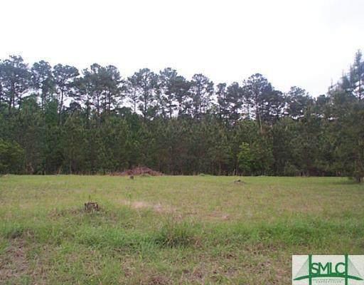 304 Lakeshore Drive, Savannah, GA 31419 (MLS #257041) :: Keller Williams Realty Coastal Area Partners