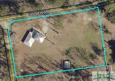 229 Golden Drive, Rincon, GA 31326 (MLS #259959) :: The Arlow Real Estate Group