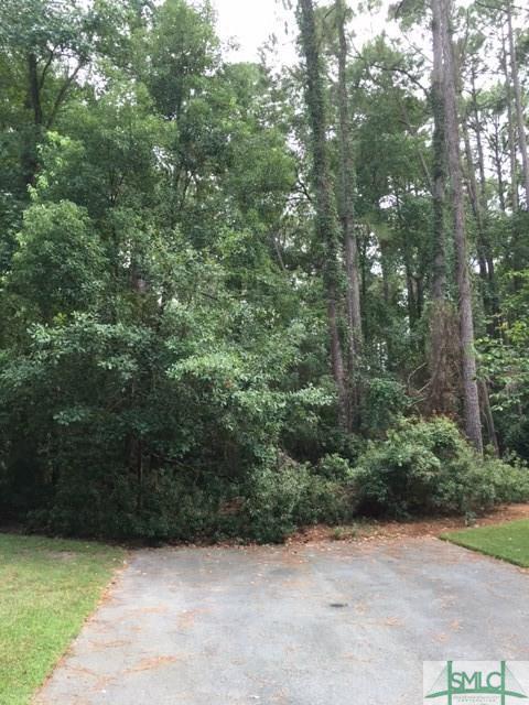 5 Franklin Wood Lane, Savannah, GA 31411 (MLS #202894) :: Karyn Thomas