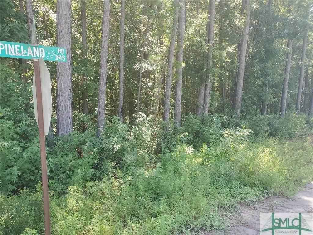 000 Pineland Road - Photo 1