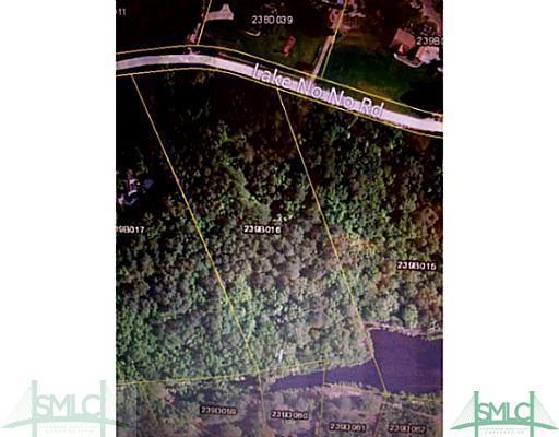 01 Lake No No Road, Midway, GA 31320 (MLS #125851) :: The Sheila Doney Team