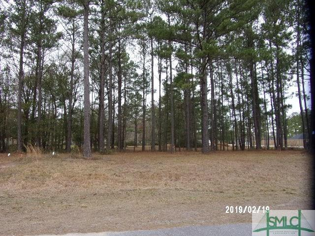 Lot 29 Windsor Court, Guyton, GA 31312 (MLS #175307) :: The Sheila Doney Team