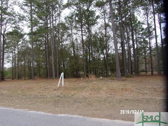 Lot 30 Windsor Court, Guyton, GA 31312 (MLS #175340) :: The Sheila Doney Team