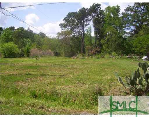 174 Vidalia Road, Savannah, GA 31419 (MLS #121717) :: The Arlow Real Estate Group