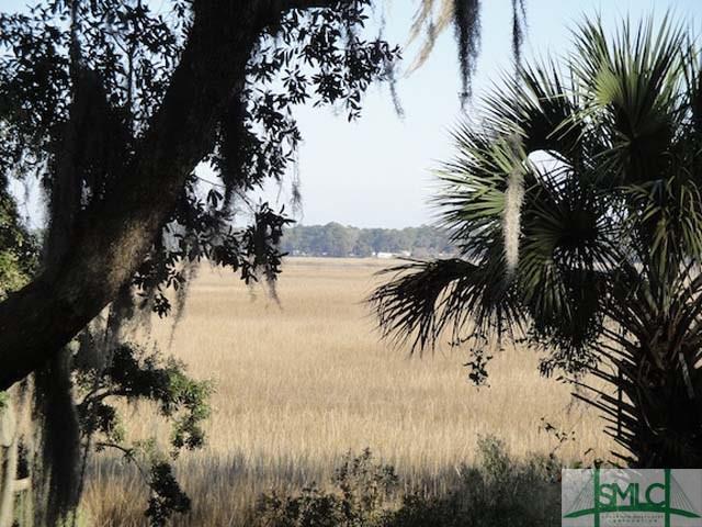 0 Coffee Bluff Road, Savannah, GA 31419 (MLS #162889) :: The Robin Boaen Group