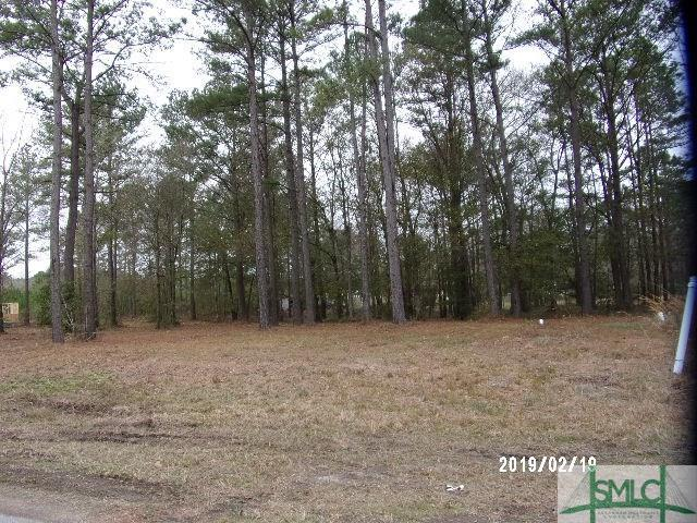 Lot 28 Windsor Court, Guyton, GA 31312 (MLS #165716) :: The Sheila Doney Team