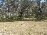 739 State Rd 66 Road - Photo 11