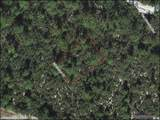 10563 Interlacher Drive - Photo 2