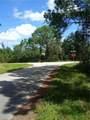 7805 Sun N Lake Boulevard - Photo 5