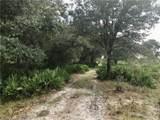 Fish Branch Road - Photo 11