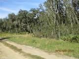 3237 Ansonia Road - Photo 10
