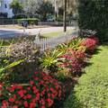 867 Eucalyptus Street - Photo 3