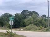 551 Dreamland Drive - Photo 12
