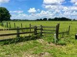 1503 Dink Albritton Road - Photo 9