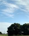 1353 Blue Heron Drive - Photo 1