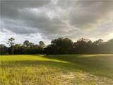 1003 Nesting View Drive - Photo 3