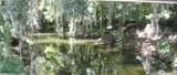 1143 Peachtree Drive - Photo 3