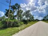 212 Roadrunner Avenue - Photo 5