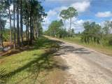 881 Papaya Street - Photo 3