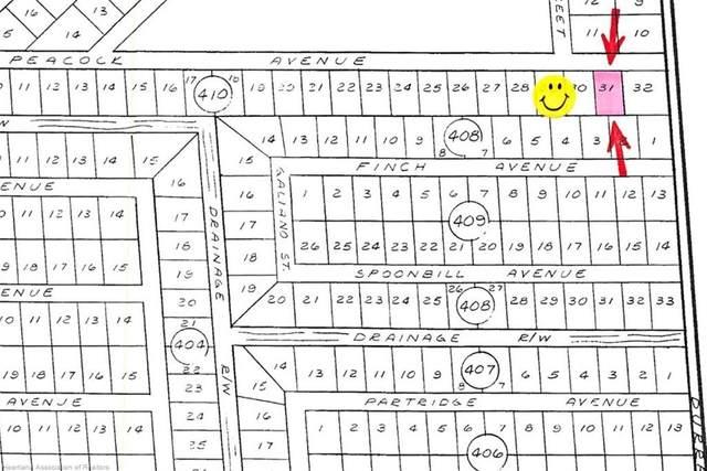 3402 Peacock Avenue, Lake Placid, FL 33852 (MLS #269775) :: Compton Realty
