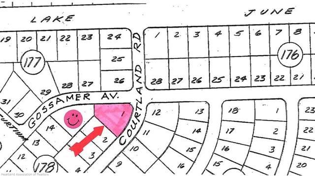 3325 Gossamer Avenue, Lake Placid, FL 33852 (MLS #272387) :: Compton Realty