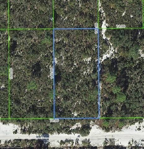 1414 Wisteria Street, Lake Placid, FL 33852 (MLS #273704) :: Compton Realty