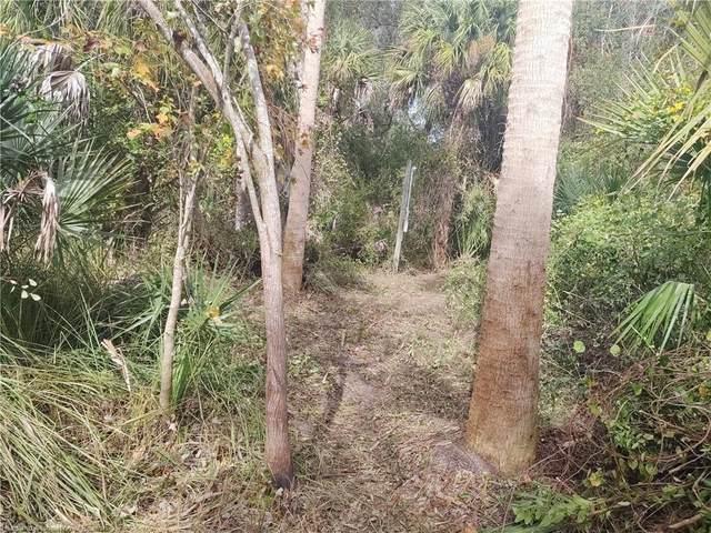 5150 Deer Run Drive, Zolfo Springs, FL 33890 (MLS #273967) :: Compton Realty