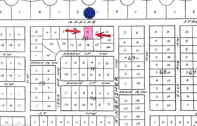 1048 Apache Street NW, Lake Placid, FL 33852 (MLS #275619) :: Compton Realty