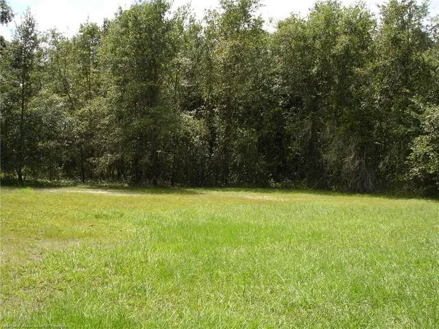 Cross Creek Lane, Wauchula, FL 33873 (MLS #275638) :: Compton Realty