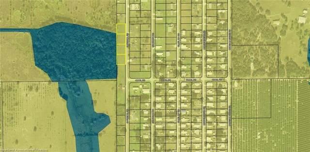 1219,1229,1239,1249 Cardinal Road, Wauchula, FL 33873 (MLS #276191) :: Compton Realty