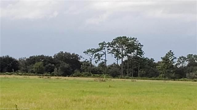 265 John Pearce Grade Road, Venus, FL 33960 (MLS #276406) :: Compton Realty