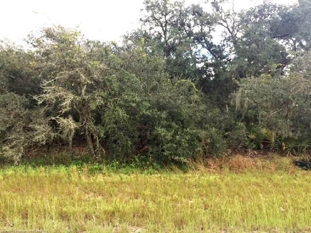 2950 N Sedgewick Road, Avon Park, FL 33825 (MLS #276452) :: Compton Realty