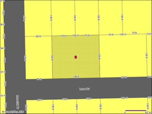 106 Lasso Drive, Interlachen, FL 32148 (MLS #276556) :: Compton Realty