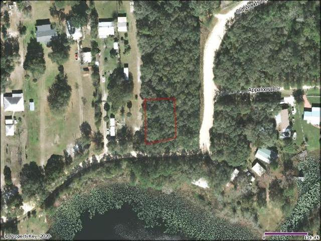 Old Woods Lots 1+2 Block 1 Road, Interlachen, FL 32148 (MLS #276644) :: Compton Realty