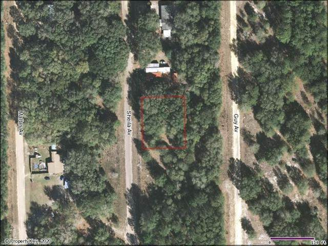 Lot 10 Blk 72 Sheila Avenue, Interlachen, FL 32148 (MLS #276669) :: Compton Realty