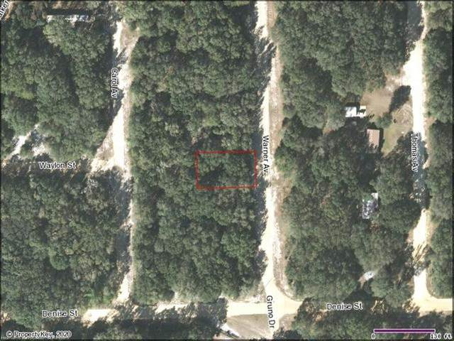 Lot 16 Block 105 Warner Avenue, Interlachen, FL 32148 (MLS #276688) :: Compton Realty