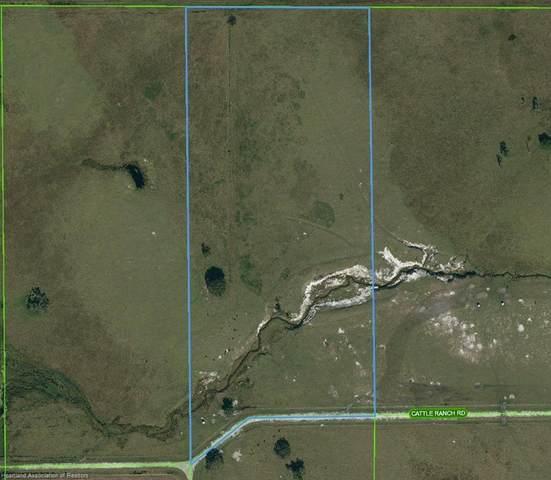 1008 Cattle Ranch Road, Venus, FL 33960 (MLS #277885) :: Compton Realty