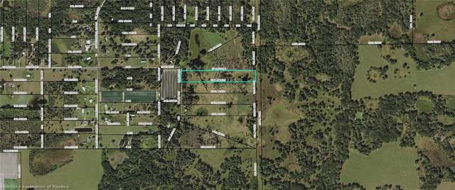 171 Golden Oaks Road, Zolfo Springs, FL 33890 (MLS #279233) :: Compton Realty
