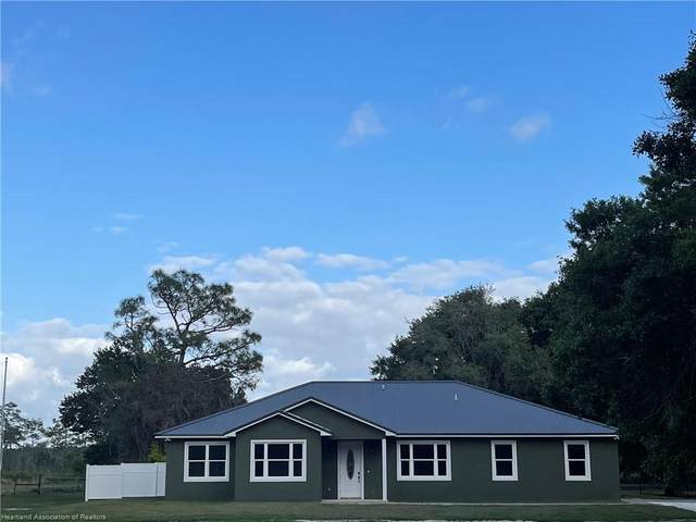 3991 Raccoon Road, Zolfo Springs, FL 33890 (MLS #279406) :: Compton Realty
