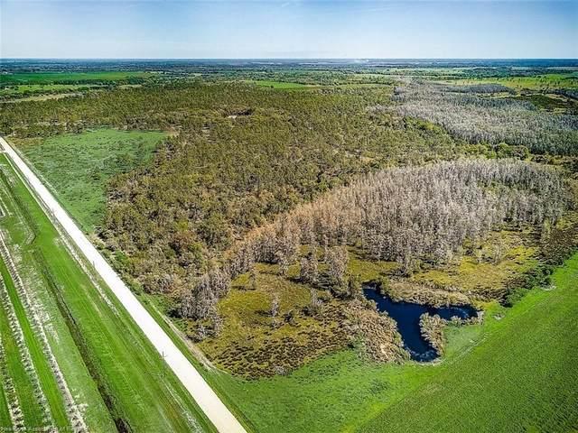 4134 Fish Branch Road, Zolfo Springs, FL 33890 (MLS #279540) :: Compton Realty