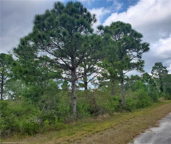 239 Otter Avenue NW, Lake Placid, FL 33852 (MLS #279609) :: Compton Realty