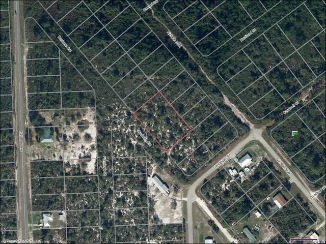 447 Polk Avenue, Lake Placid, FL 33852 (MLS #279626) :: Compton Realty