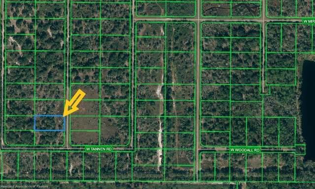 2234 Bear Bryant Road, Avon Park, FL 33825 (MLS #280100) :: Compton Realty