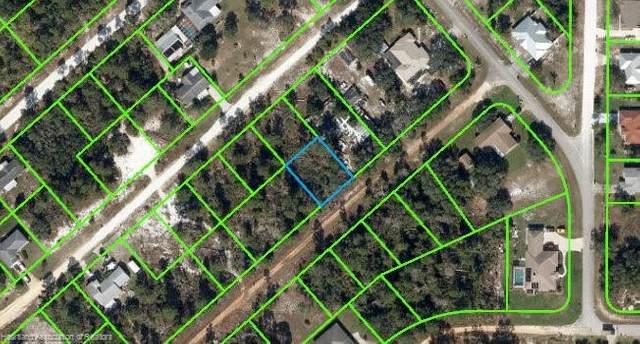 3036 W Lundelius Road, Avon Park, FL 33825 (MLS #280251) :: Compton Realty