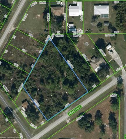 1406 Bradley Avenue, Lake Placid, FL 33852 (MLS #280326) :: Compton Realty