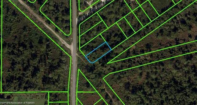 481 Nichele Boulevard, Lake Placid, FL 33852 (MLS #280381) :: Compton Realty