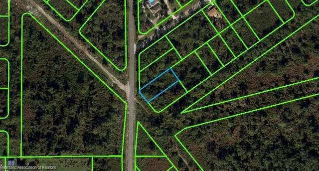 483 Nichele Boulevard, Lake Placid, FL 33852 (MLS #280382) :: Compton Realty