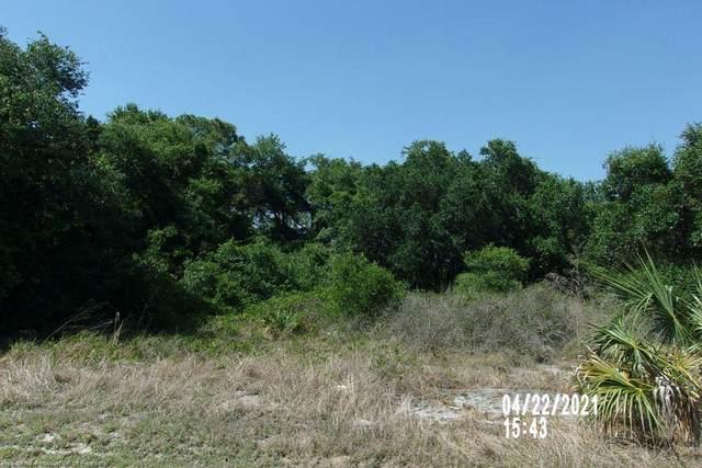 5142 Shad Drive, Sebring, FL 33870 (MLS #280467) :: Compton Realty