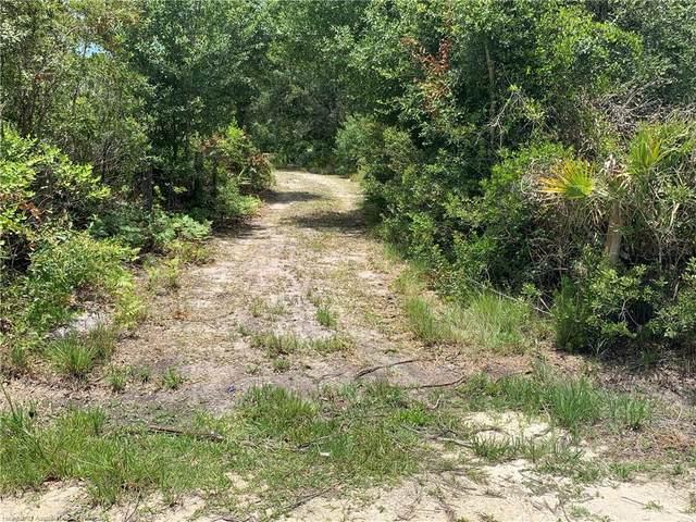 494 Kulwicki Drive, Venus, FL 33960 (MLS #280945) :: Compton Realty