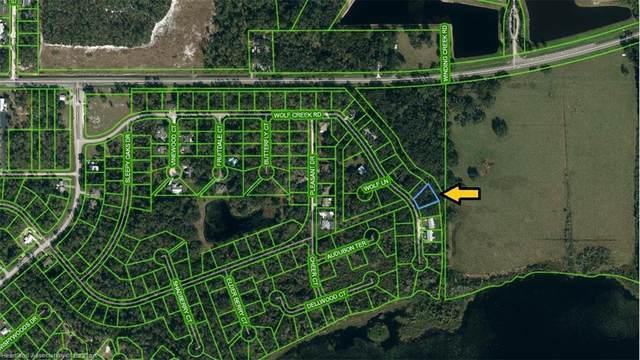 2136 Wolf Creek Road, Sebring, FL 33875 (MLS #281438) :: Compton Realty